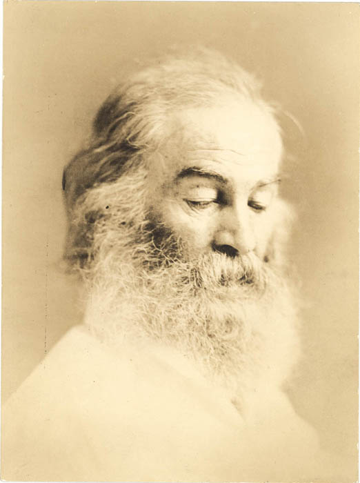 the childhood education family and poetry of walt whitman As early as 1872, whitman had contributed two poems, the mystic  1879, [5]  staying with his brother and family in st louis on the night of september 12   he walks with a cane, using considerable care, as he has not fully recovered  from a.